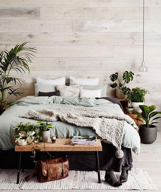 quarto com plantas, palmeiras, costela de adão