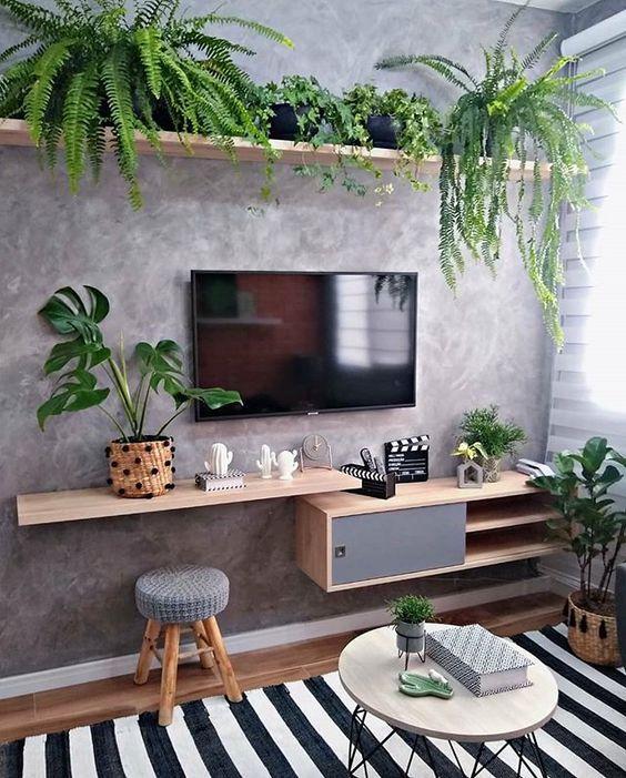 sala com plantas, samambaia, costela de adão e ficus lyrata