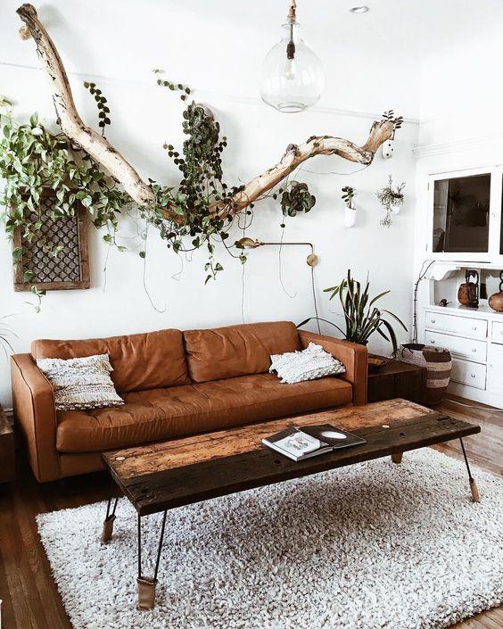 sala com plantas suspensas, decoração rústica
