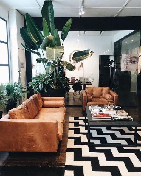 sala com plantas, palmeiras e bananeiras
