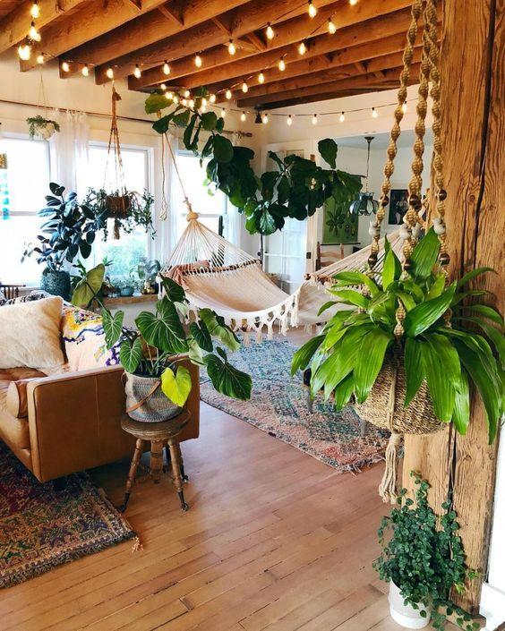sala com plantas, palmeiras, ficus lyrata, costela de adão